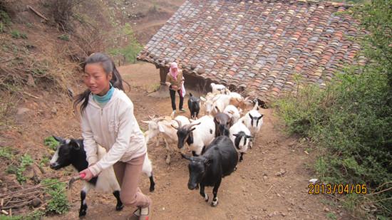 威宁的哈喇河乡,外出务工经商的不足10%